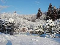 2010kiyohara1