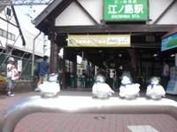 2010suizoku11_2