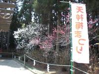 2011haga1