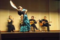 2011furamenko2