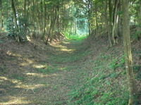 2011tobiyama3