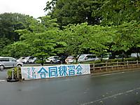 2012goudo1