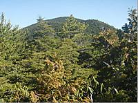 2017mizuoga64