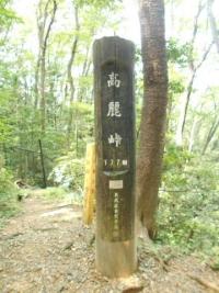 2020hiwadawararchi28